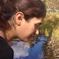 Nasim Rahmatpour